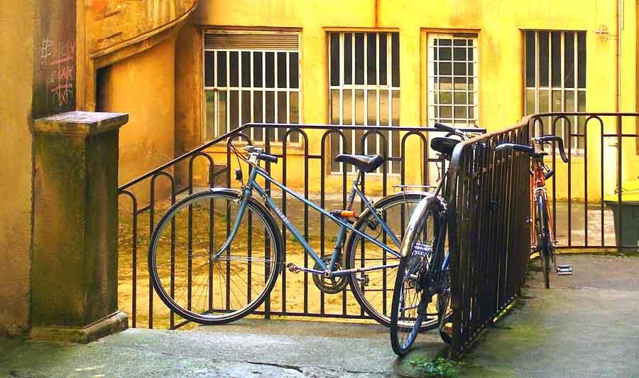 cykel på bakgården