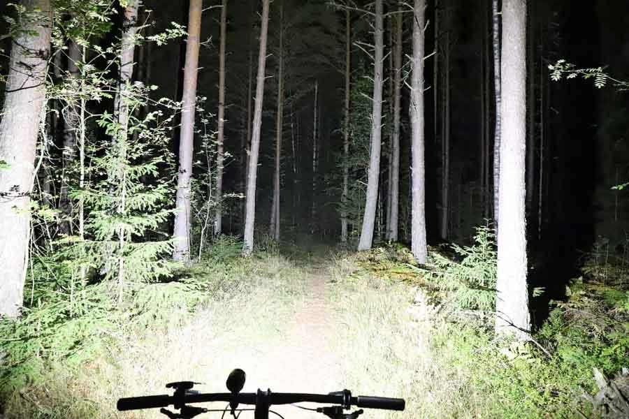 Ljuset från Volt 6000 i skogen