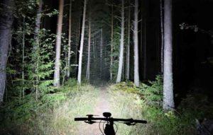 MTB-lampa lyser upp en skogsstig